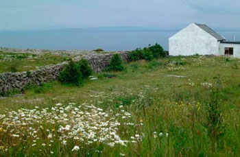 Aran-Islands-Cottage