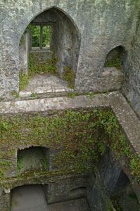 Blarney-Castle-inside