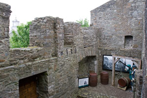 Desmond-Castle-Ireland-display-above