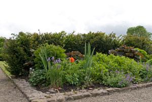 Knappogue-Castle-Ireland-garden