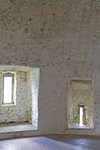 newtown castle ireland inside