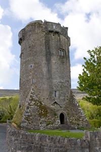 Newtown Castle Ireland