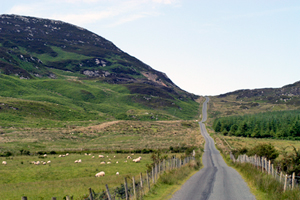 Northwest Ireland country road