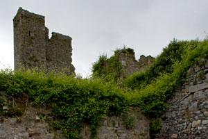 Ormonde-Castle-Ruins-Ireland