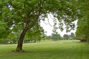 Oughterard Ireland golf
