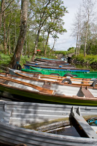 Ross-Castle-boats