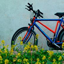 Aran Islands bicycles