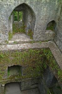 Blarney-Castle-inside