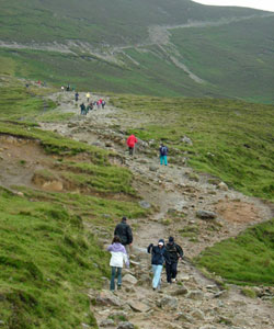 croagh-patrick-path-others