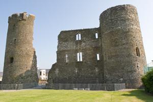 Ferns-Castle