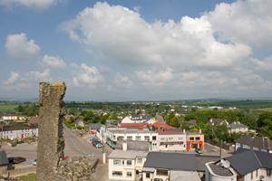 ferns-castle-view