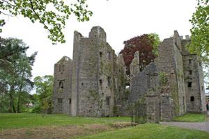 mallow-castle